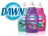 Dawn Dishwashing Liquid & Soap Coupons