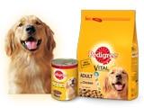 Pedigree Dog Food & Treats Coupons